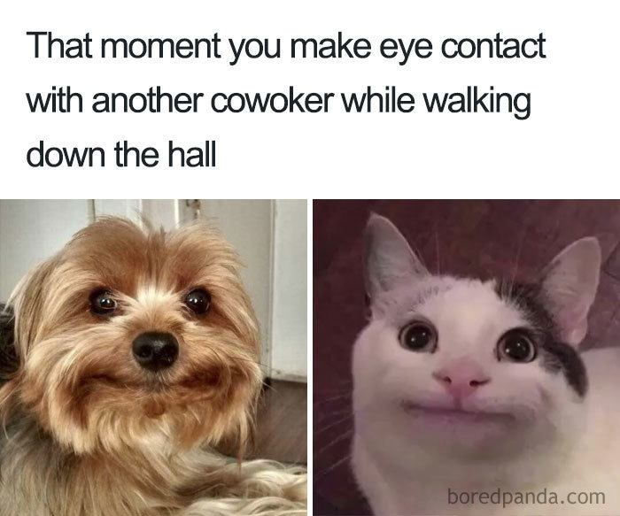 That Moment You Make An Eye Contact