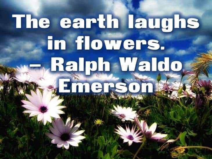 The Earth Laughs