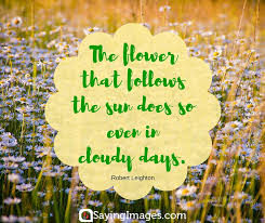 The Flower That Follows
