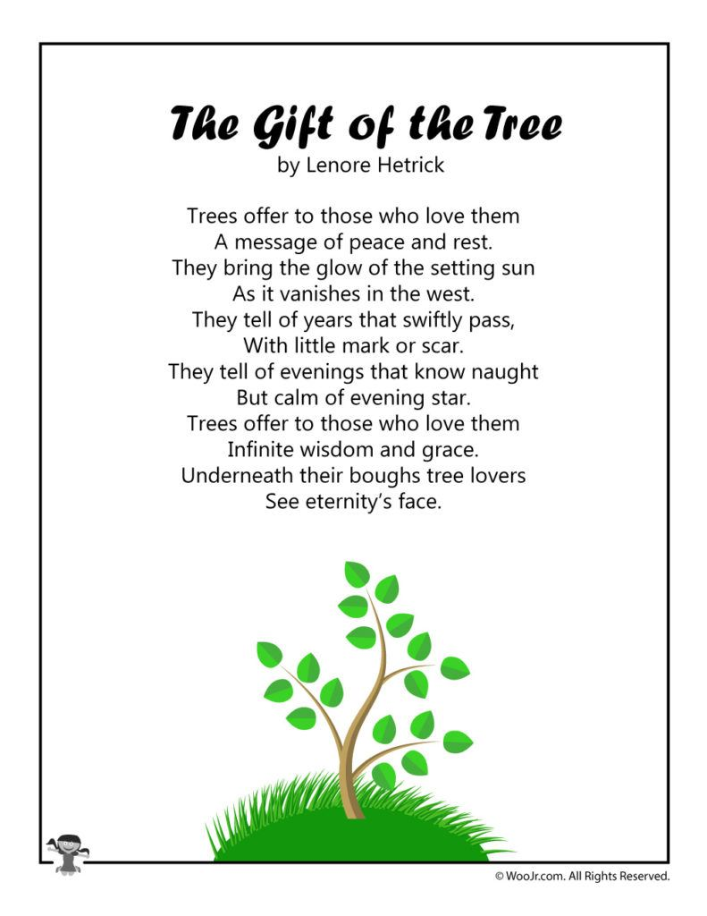 The Gift of the Tree
