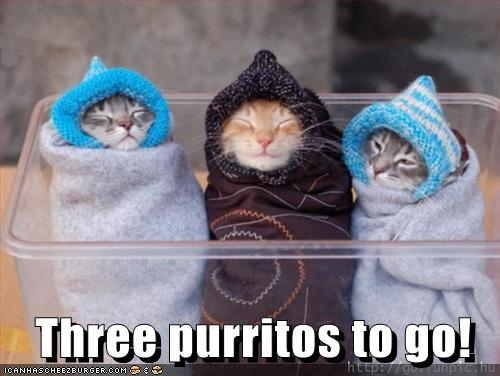 Three Purritos To Go