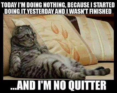 Today I'm doing nothing..