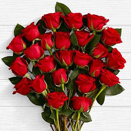Two Dozen Long Stemmed Roses