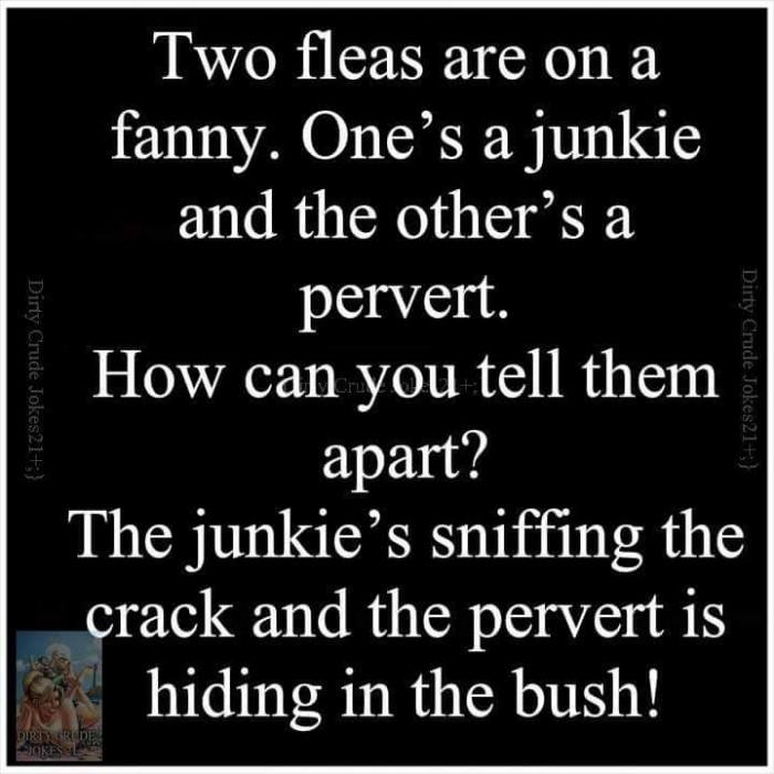 Two Fleas Are On A Fanny