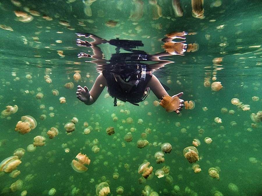 Underwater GoPro