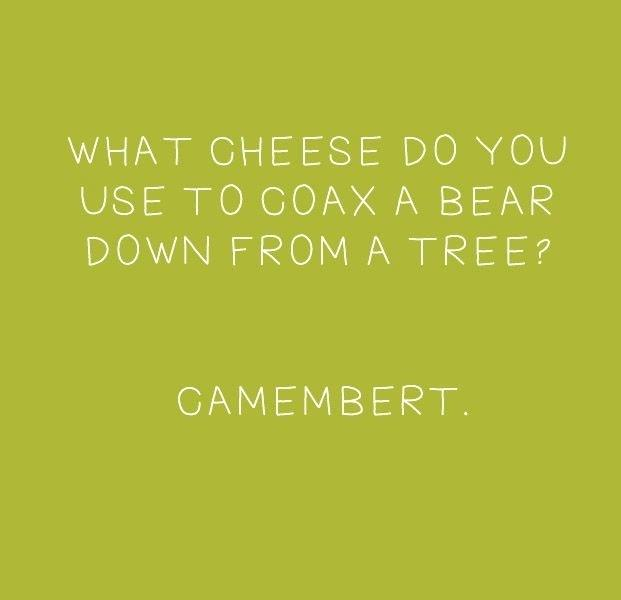 What Cheese Do You Use
