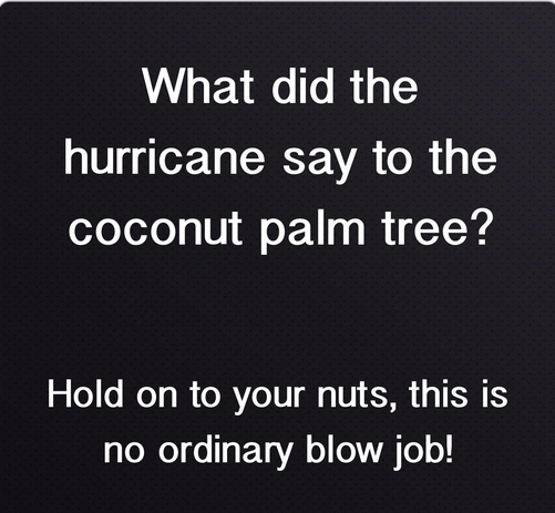 What Did The Hurricane Say