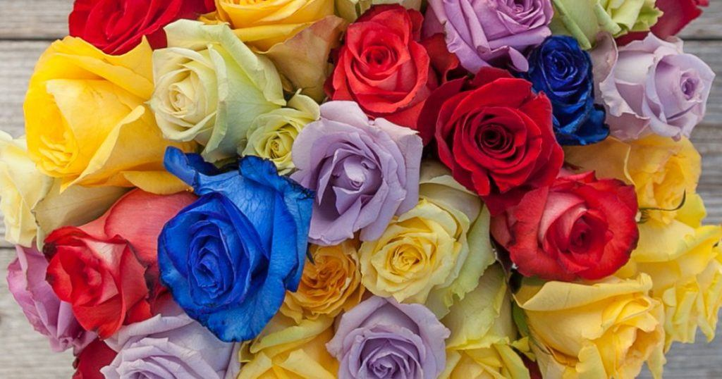 What Do The Colors Of Roses Mean