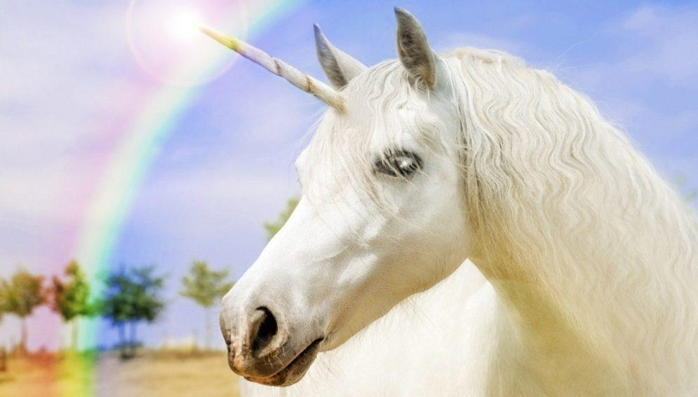 What Do Unicorns And Perfect Property