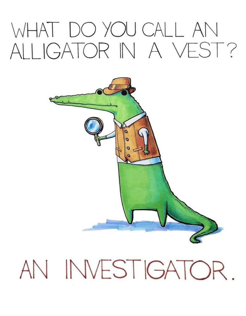 What Do You Cal An Alligator