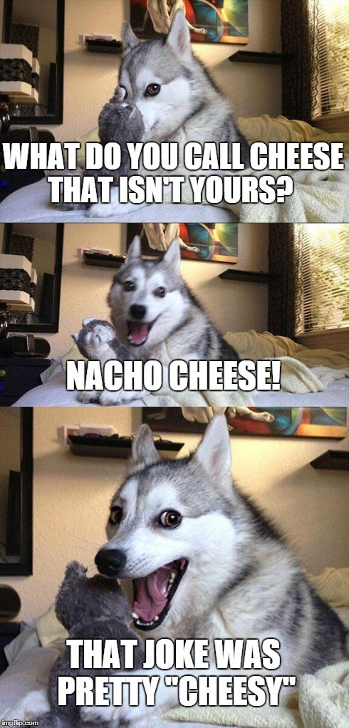 What Do You Call Cheese