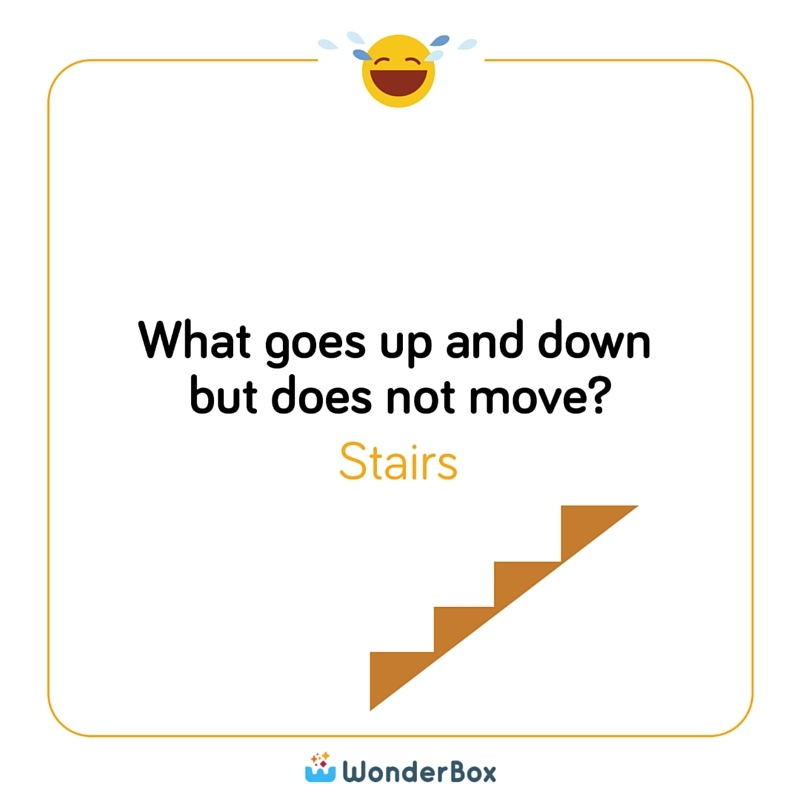 What Goes Up And Down