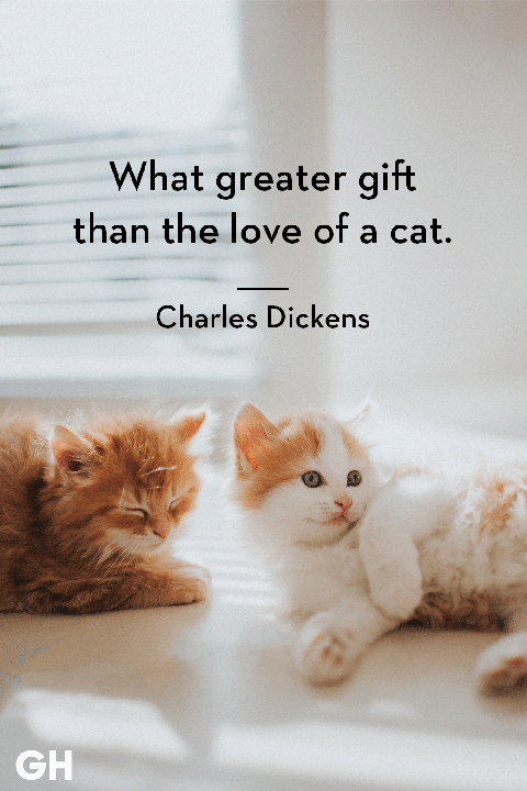 What Greater Gift