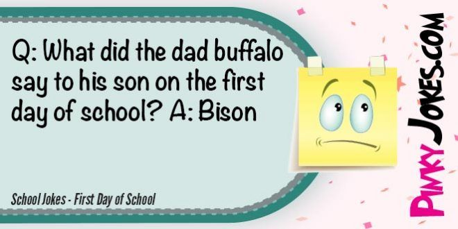 What did the dad buffalo say