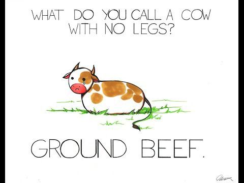 What do you call a cow