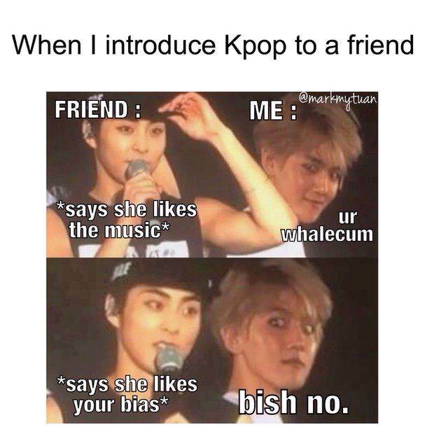 When I Introduce KPop To A Friend