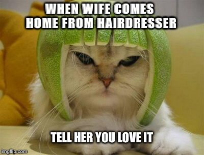 When Wife Comes Home From Hairdresser