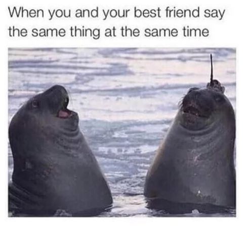 When You And Your Best Friend Say The Same Thing