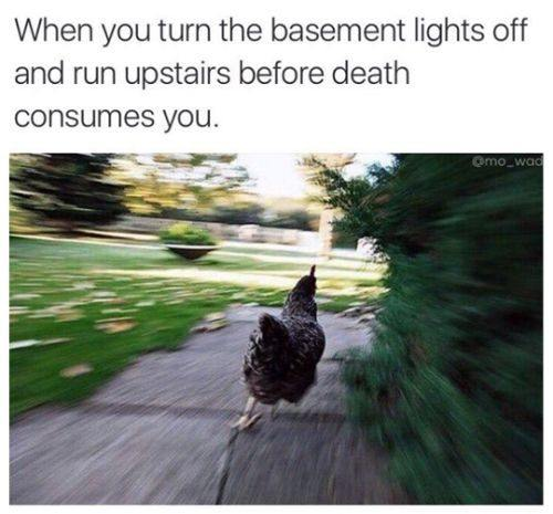 When You Turn The Basement