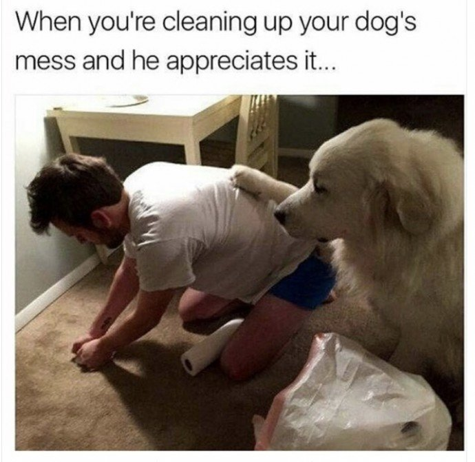 When You're Cleaning Up