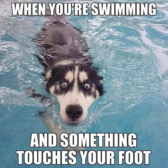 When You're Swimming