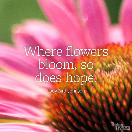 Where Flowers Bloom