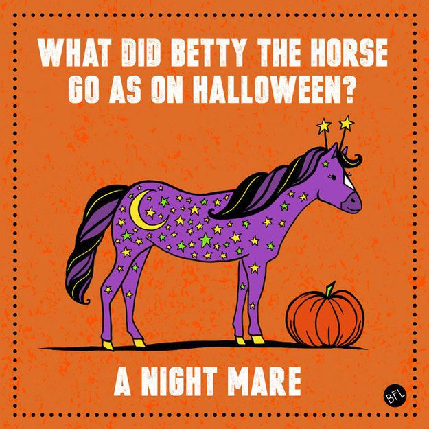 Why did betty the horse go as on halloween