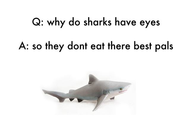 Why do sharks have eyes