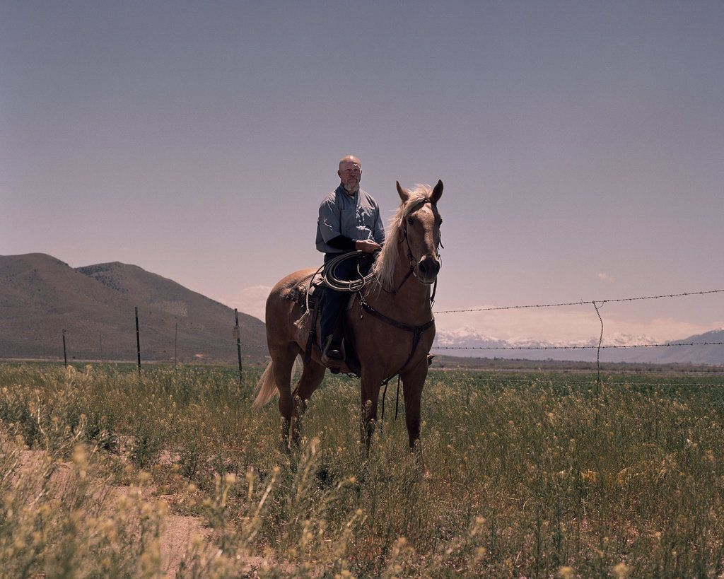 Wild Horses And The Inmates