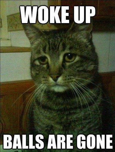 Woke up