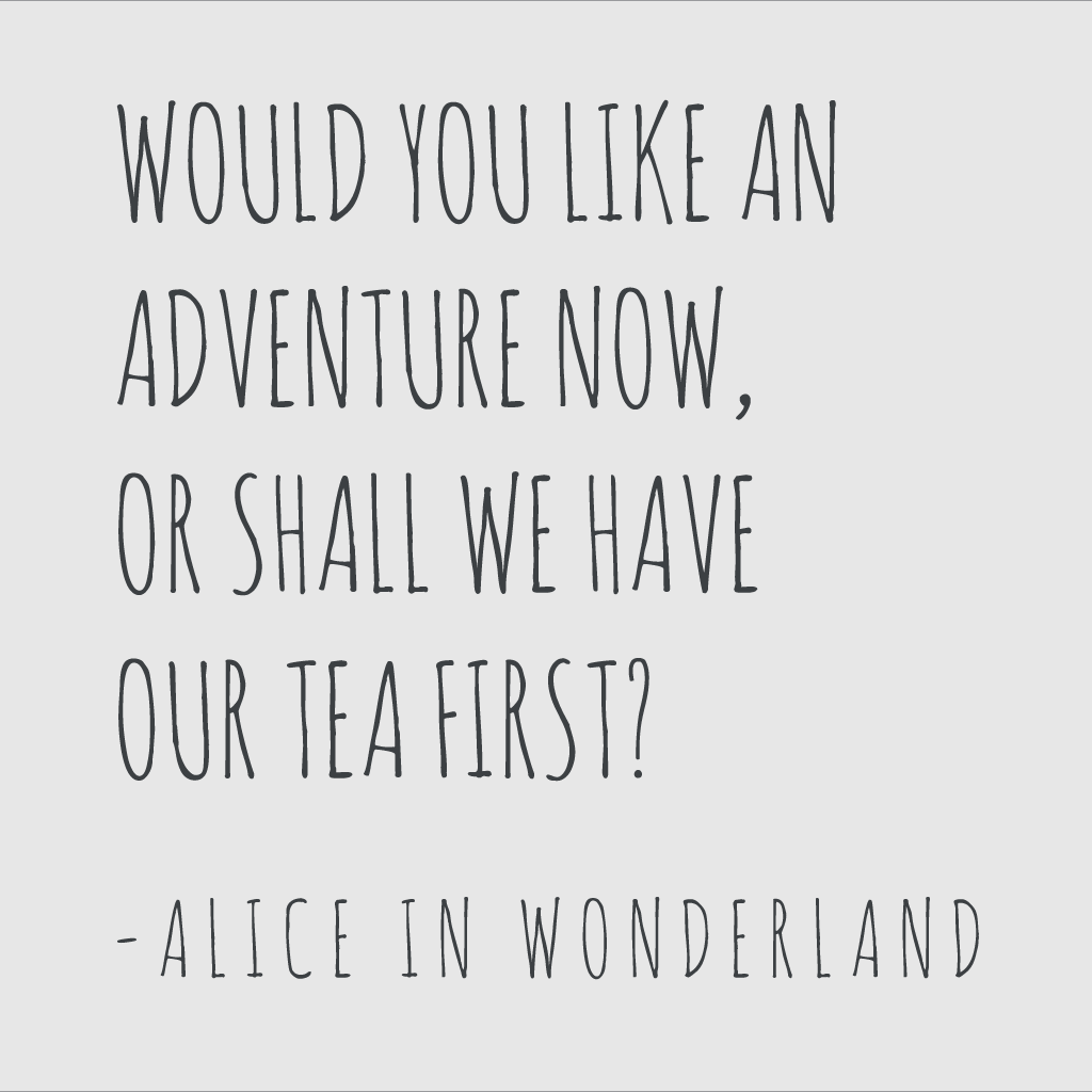 Would You Like An Adventure Now