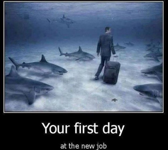 You First Day