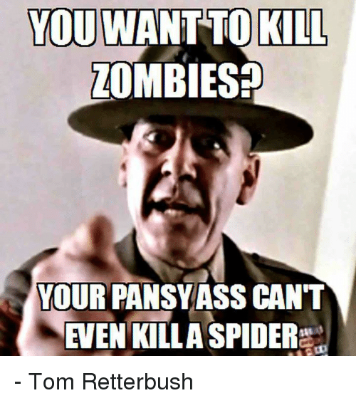 You Want To Kill Zombies