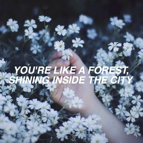 You're Like A Forest